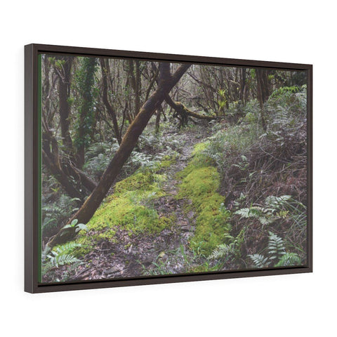 Image of Horizontal Framed Premium Gallery Wrap Canvas - The Rio Sabana river trail - upper sections after Hurr. Maria - El Yunque rainforest PR - No1 Canvas Printify