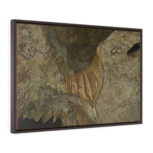 Horizontal Framed Premium Gallery Wrap Canvas - Unique Mona Island Caves Exploration in 2019 -- Galapagos of the Caribbean - Puerto Rico: Canvas Printify