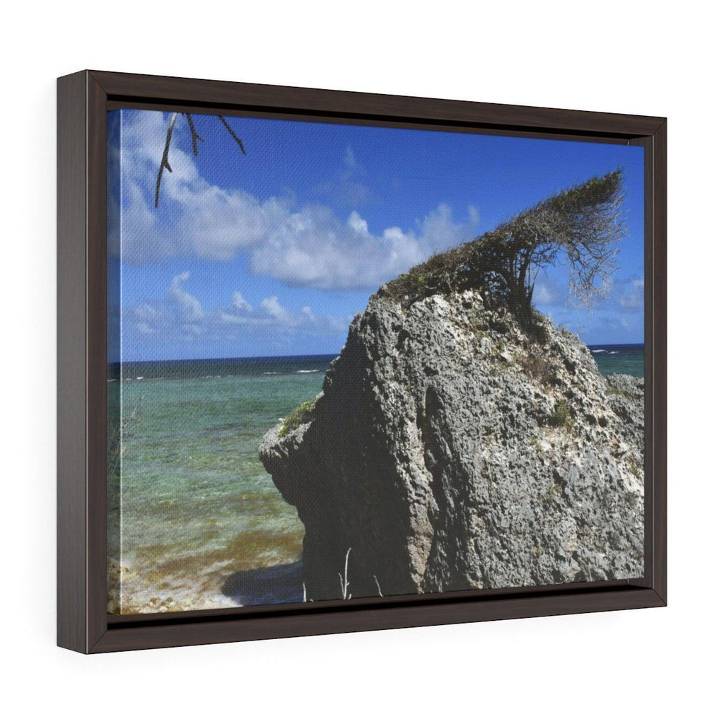 Horizontal Framed Premium Gallery Wrap Canvas - USA Print - Unique REMOTE Mona Island - Galapagos of the Caribbean - PR Canvas Printify