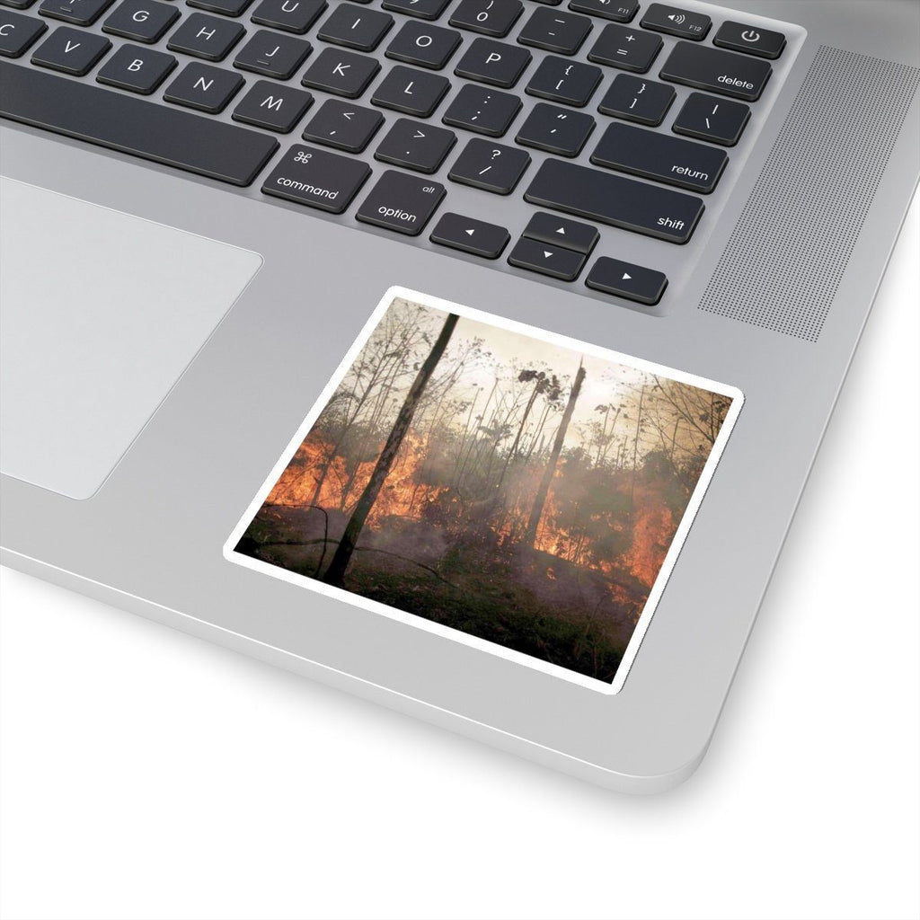 Kiss-Cut Stickers - The NOAA Keeling curve - raging fires in the Amazon forest Paper products Printify