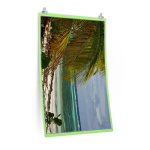 Low cost quality Posters - Pristine and remote - Pajaros Beach algae in Mona Island PR Poster Printify