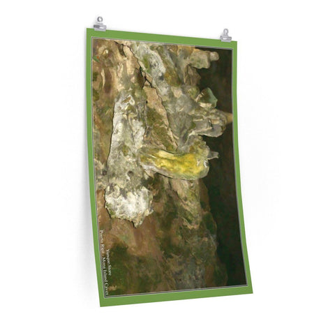 Image of Low cost quality Posters - Pristine and remote - Pajaros Beach caves - in Mona Island PR Poster Printify