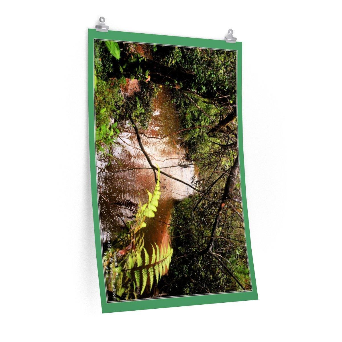 Low cost top-quality Posters - Deep forest exploration - Rio Sabana - El Yunque PR Poster Printify