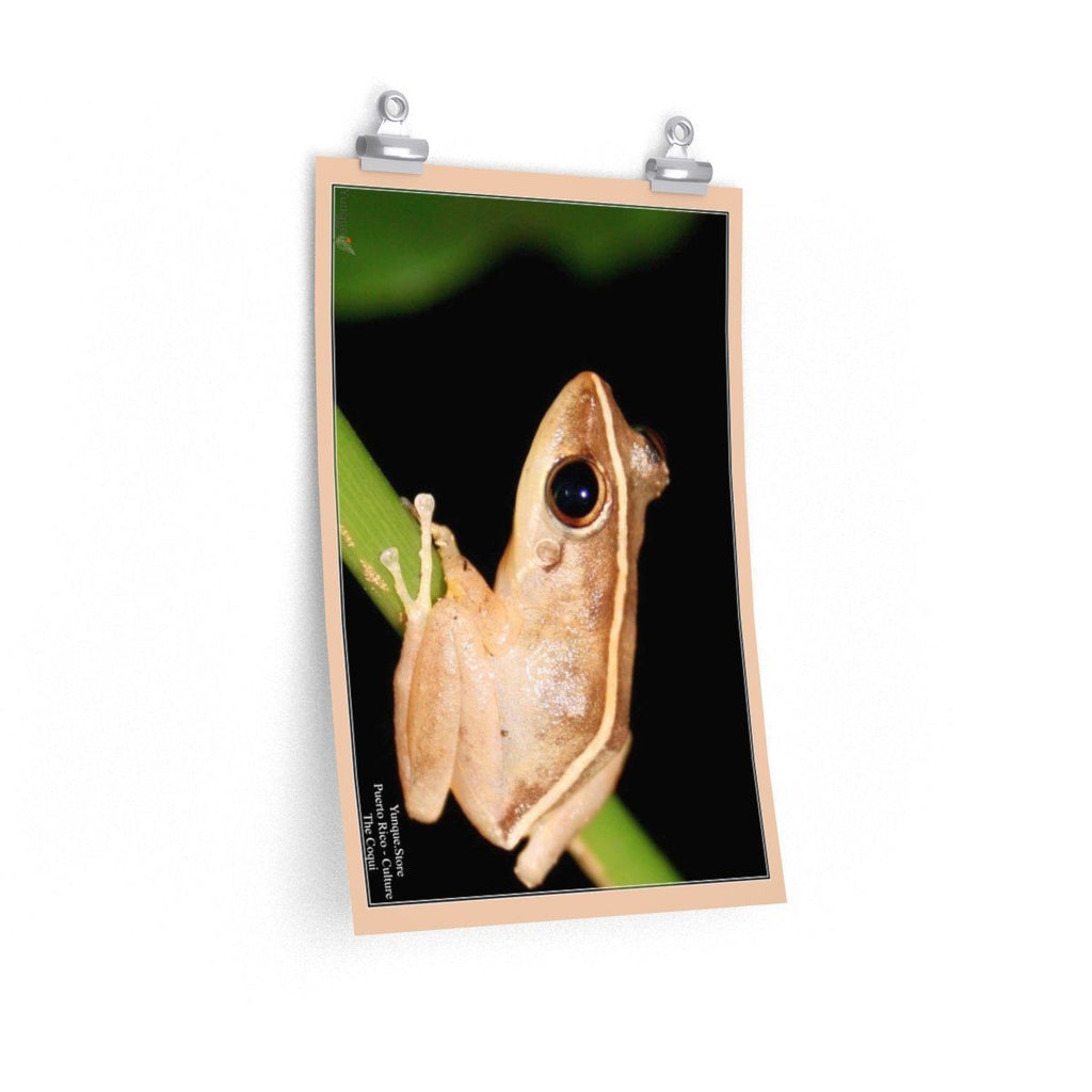 Low cost top-quality Posters - PR Culture - The national mascot - the Coqui Poster Printify