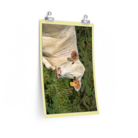 Image of Low cost top-quality Posters - PR Pets and Animals - The Cow Poster Printify