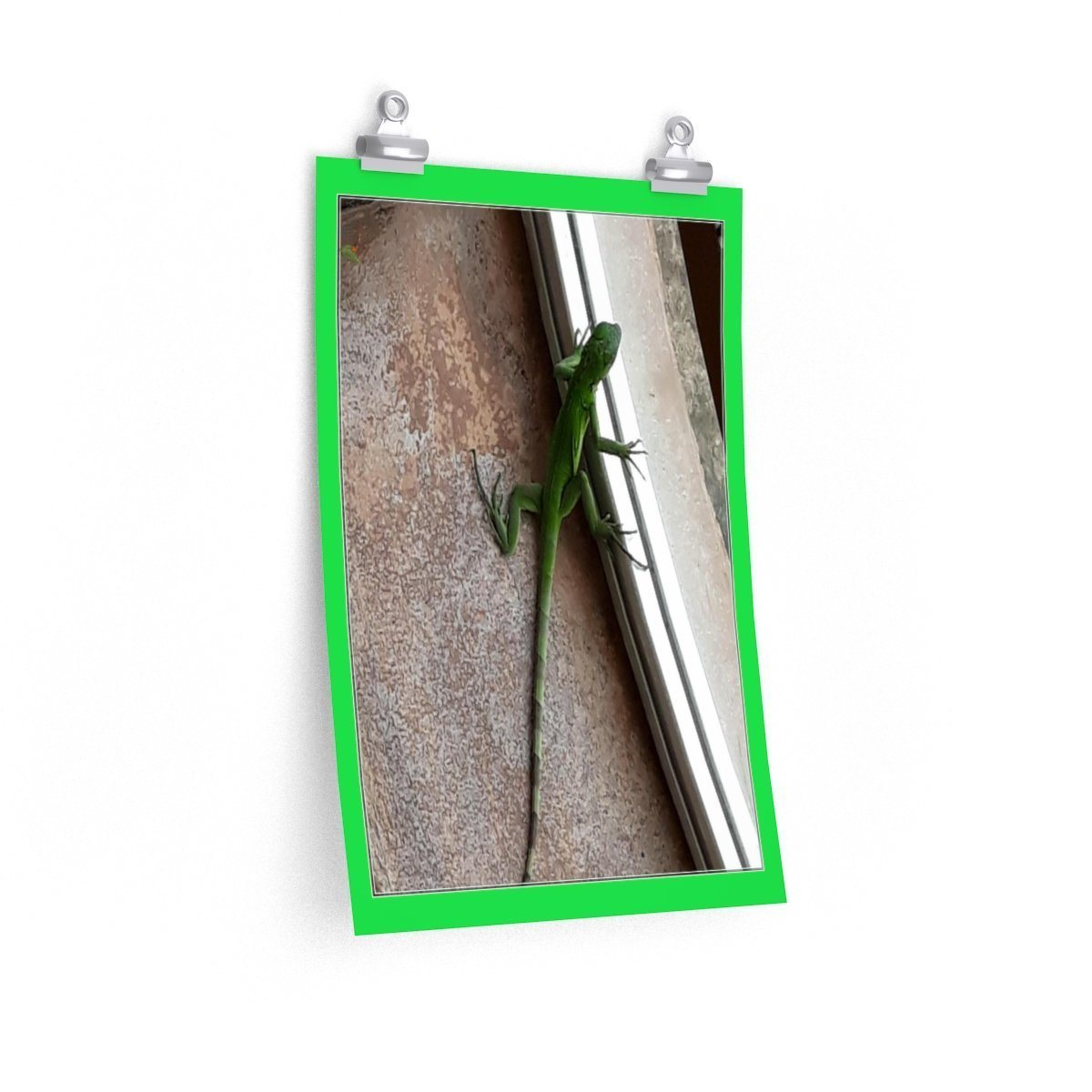 Low cost top-quality Posters - PR Pets and Animals - The Lizard Poster Printify