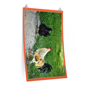 Low cost top-quality Posters - PR Pets and Animals - The Rooster and Chicken Poster Printify