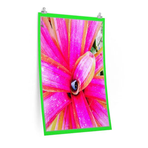 Low cost top-quality Posters - PR Plants and Flowers - Bromeliad Poster Printify