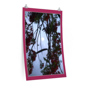 Low cost top-quality Posters - PR Plants and Flowers - Flamboyan in full moon Poster Printify