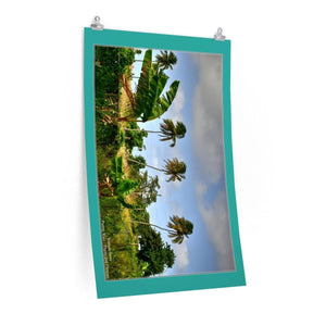 Low cost top-quality Posters - PR Plants and Flowers - Isabela country Poster Printify
