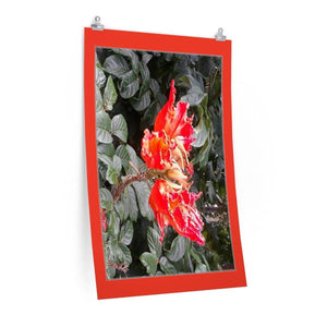 Low cost top-quality Posters - PR Plants and Flowers - Meaito tree flowers Poster Printify