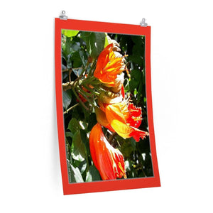 Low cost top-quality Posters - PR Plants and Flowers - Meaito tree Poster Printify