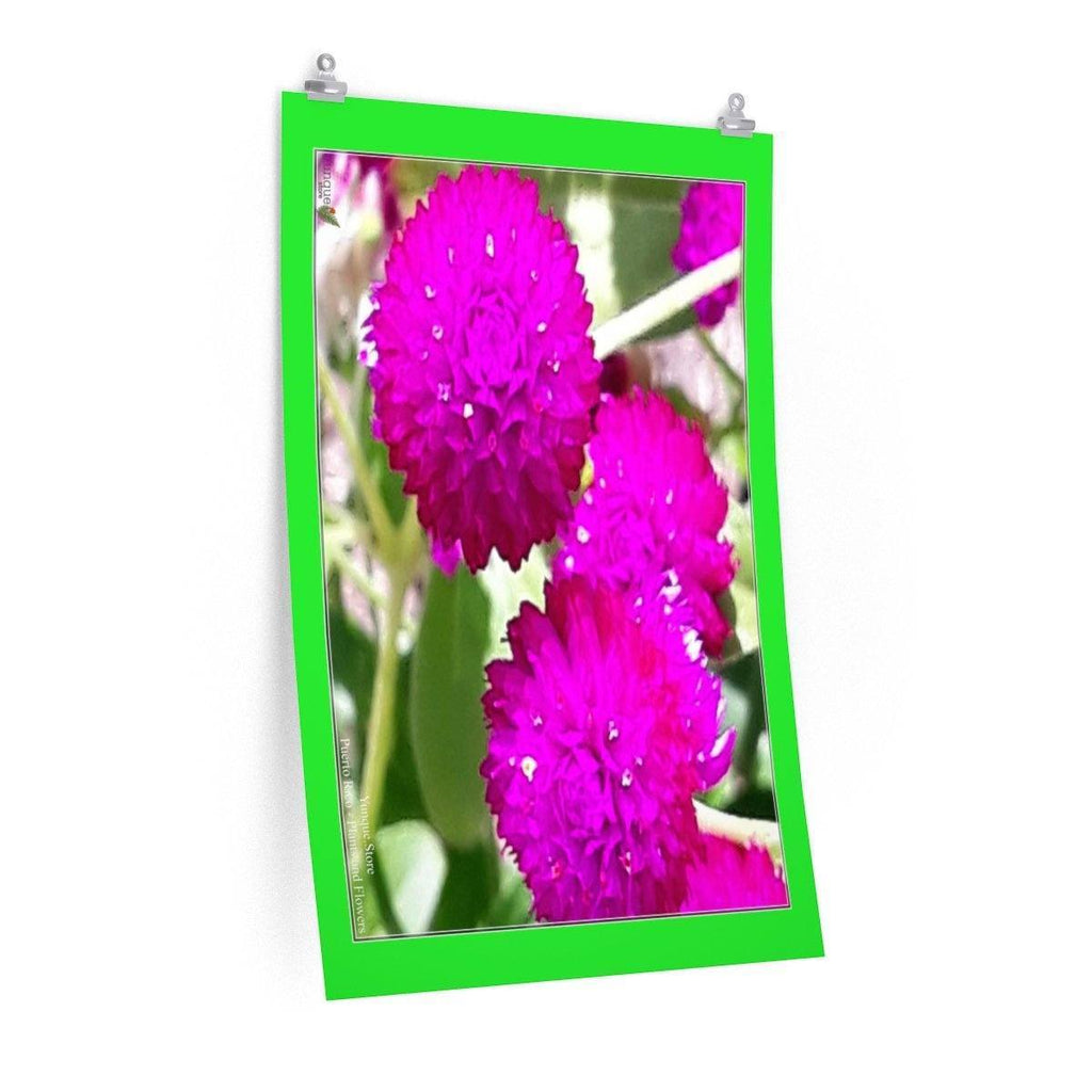 Low cost top-quality Posters - PR Plants and Flowers Poster Printify