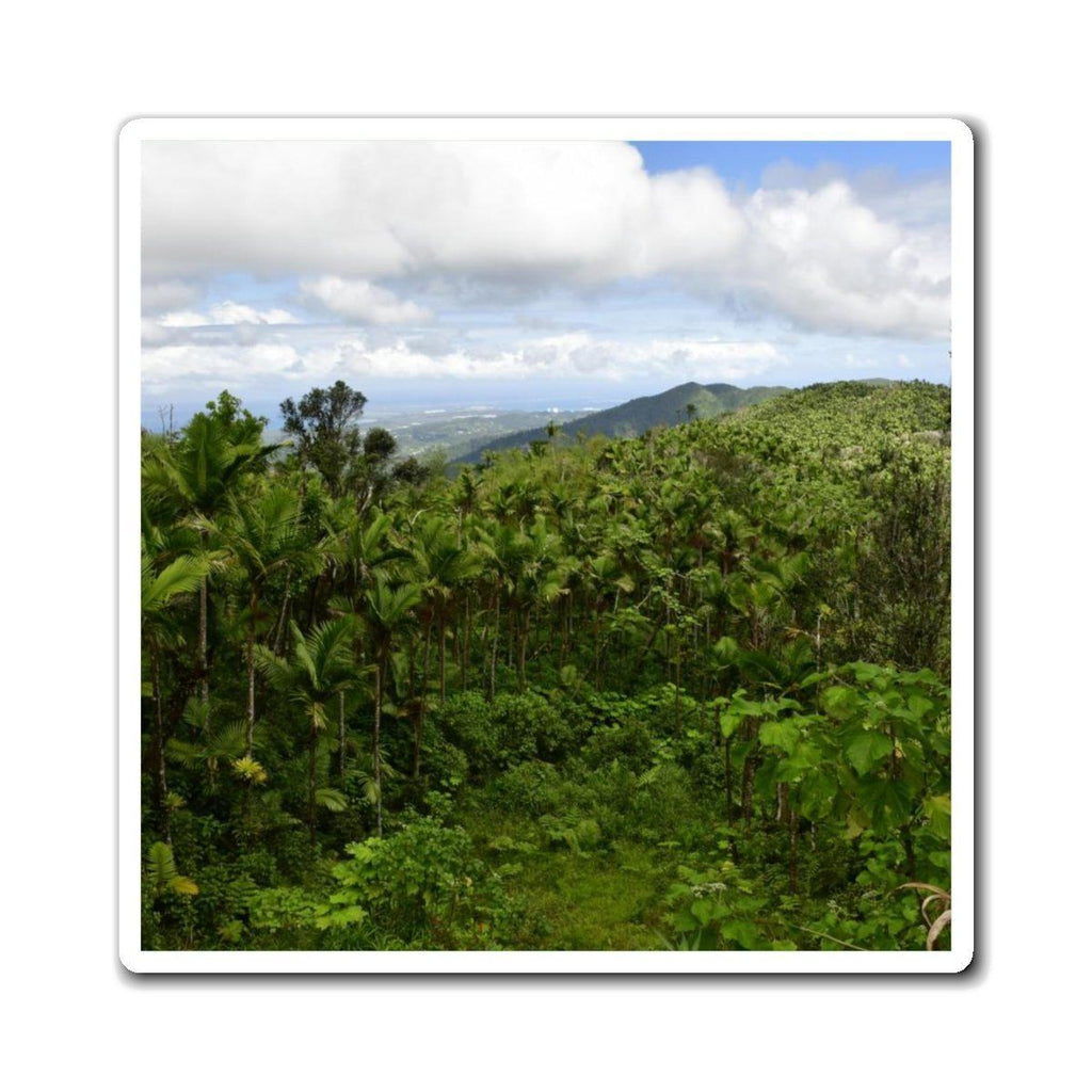 Magnets - Views of El Yunque rain forest Puerto Rico Paper products Printify