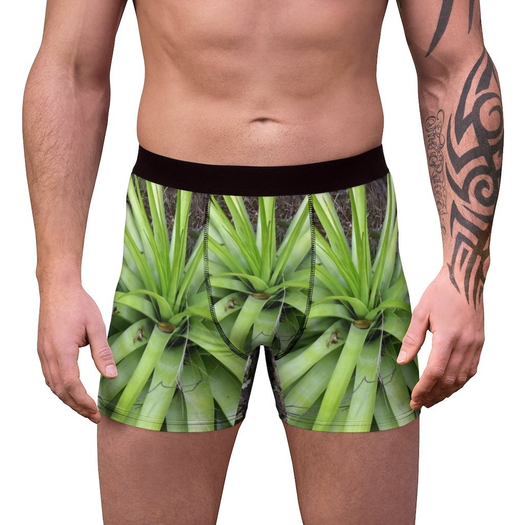 Men's Boxer Briefs - Mona Island PR bromeliad and awesome beach on back - Yunque Store