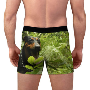 Men's Boxer Briefs - Rio Sabana bamboos and Dog Firo in the forest in back - Yunque Store