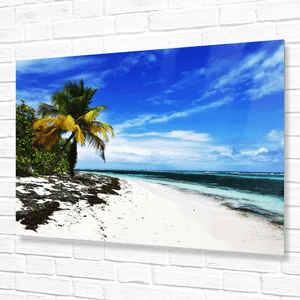 💎 Mesmerizing Mona Island WALL PLATE - Pajaros beach - remote - 50 miles from Puerto Rico - Yunque Store
