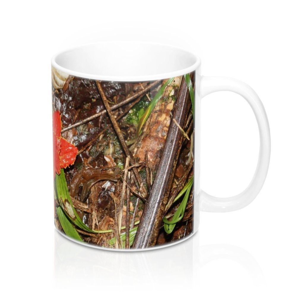 Mug 11oz - UK Print - Floor leaves in Tradewinds Trail - El Yunque rain forest Puerto Rico - Yunque Store