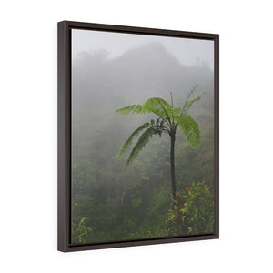 Nature@Home - Vertical Framed Premium Gallery Wrap Canvas - High Mountain Rainforest view - Toro Negro rainforest Park Over 4,000 feet altitude - Highest in Puerto Rico - Fern palm in the cloud forest - Yunque Store