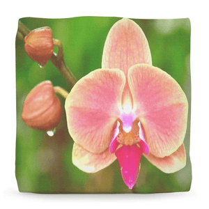 Ottomans - Amazing Collection of Tropical Flowers from all over Puerto Rico - rare images! - Yunque Store