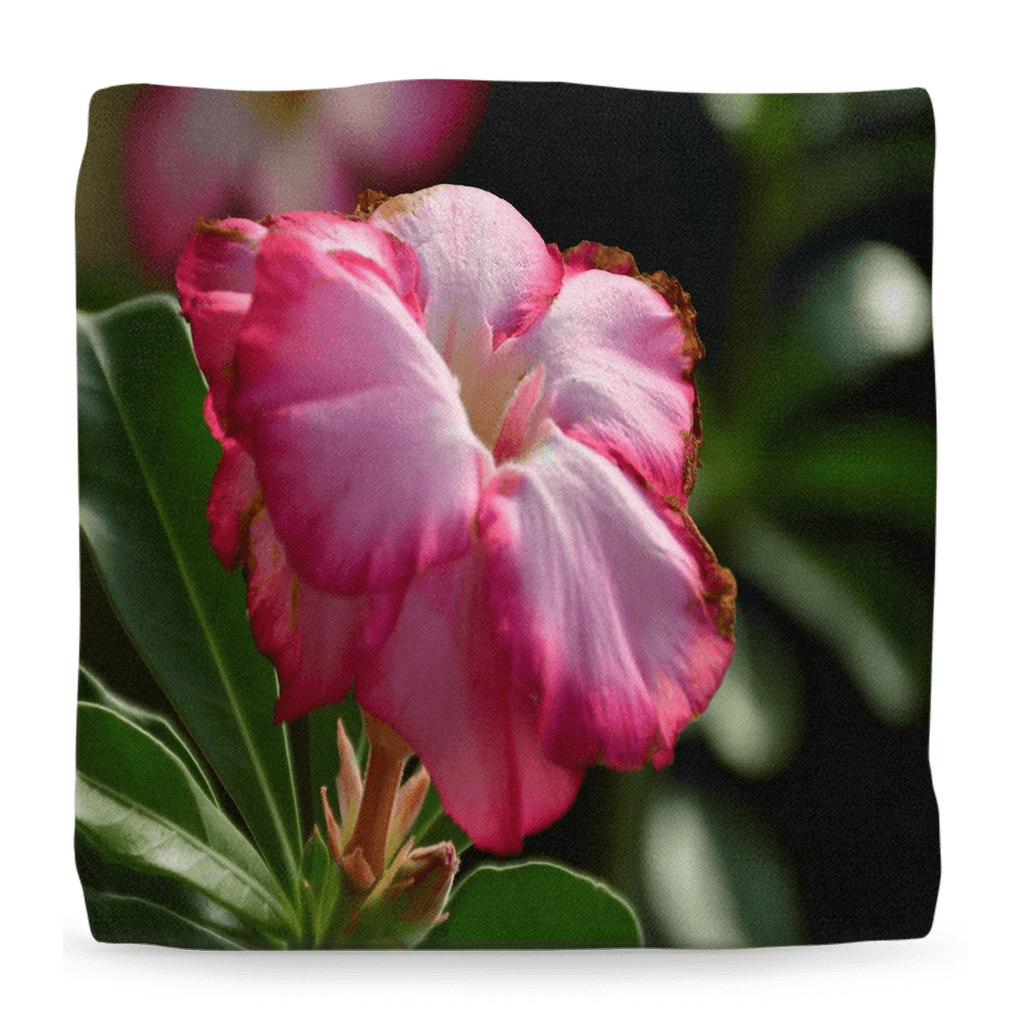 Ottomans - Colorful Tropical Flowers and Plants of Puerto Rico - set#2 - Yunque Store