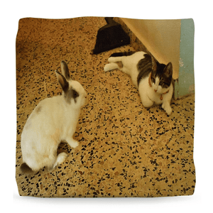 Ottomans - Home Cats - Baby Dante, Gatin Garcia and Zeus the Dog - Isabela PR - Yunque Store