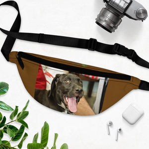 Pets Fanny Pack with Organizer and Lightweight - The home dog Zeus - Isabela Puerto Rico - Yunque Store