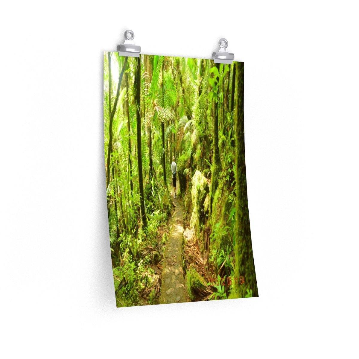 Posters - The awesome trail towards Mt Britton tower - El Yunque PR Poster Printify