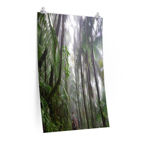 Posters - The Bromeliad - Jose going up in the cloud forest to towards El Yunque peak - El Yunque rainforest PR Poster Printify