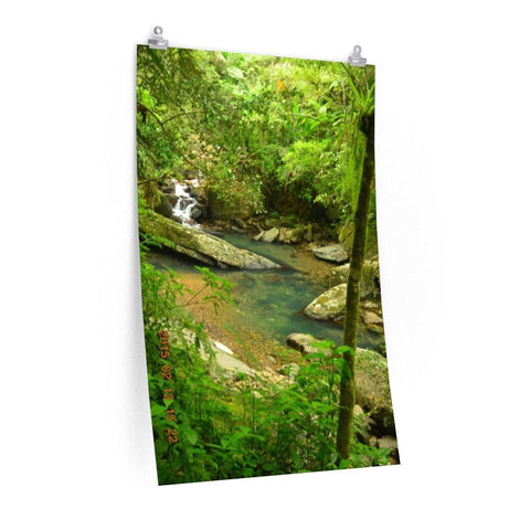Image of Posters - The Magic pond in La Mina river and trail - El Yunque PR - before Hurricane Maria Poster Printify