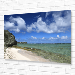 💙 Pristine Mona Island WALL PLATE - Pajaros beach - remote - 50 miles from Puerto Rico - Yunque Store