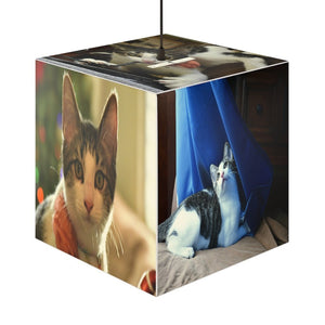 Rare and Beautiful CUBE LAMP 🐱 Beloved Pets 5 x Images of the Amazing CAT Dante - Isabela Puerto Rico - Yunque Store