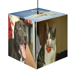 Rare and Beautiful CUBE LAMP 🤩 Beloved Pets and Animals 5 x Images - Yunque Store