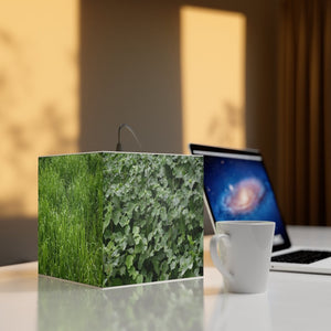 Rare and Beautiful CUBE LAMP - Dense Tropical Foliage next to Karst (Mogotes) Mountains - 5 x Images of Plants 🌿 come to LIFE - Rio Tanama - Puerto Rico - Yunque Store