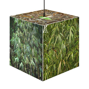 Rare and Beautiful 🌴 CUBE LAMP El Yunque Rainforest Bamboos 5 x Images come to LIFE -- 150 inches of rain per year - Yunque Store