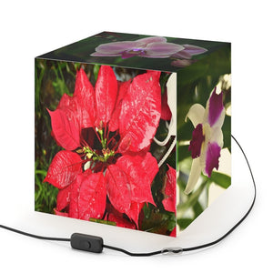 Rare and Beautiful CUBE LAMP 🌷 Tropical Flowers of Puerto Rico 5 x Images come to LIFE in full color - Yunque Store