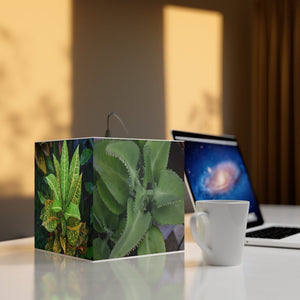 Rare and Beautiful CUBE LAMP - Typical Garden and Rainforest Plants - 5 x Images of Plants 🌿 come to LIFE - Puerto Rico - Yunque Store