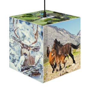 Rare and Beautiful CUBE LAMP 🤩 US National parks animals best 5 x Images come to LIFE - Yunque Store