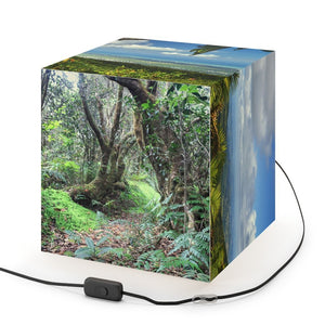 Rare and Beautiful CUBE LAMP 🌴 with Truly AWESOME VIEWS from Peaks/Trails of El Yunque Rainforest in 5 x Images come to LIFE in full Green 🐱‍🐉 - Yunque Store