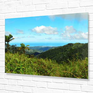 Rare view from the secret East peak Road at 2k feet - built by the US Navy and kept hidden from the public - Yunque Store