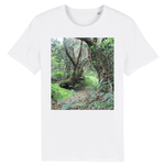 ROCKER - UNISEX T-SHIRT - Paradise path in 14km Tradewinds trail - destroyed by Hurricane Maria in 2017 - El Yunque rainforest PR - Yunque Store