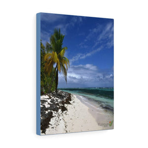 SALE - US print - Canvas Gallery Wraps - Awesome quality canvas of Pajaros Beach in Mona island - Yunque Store