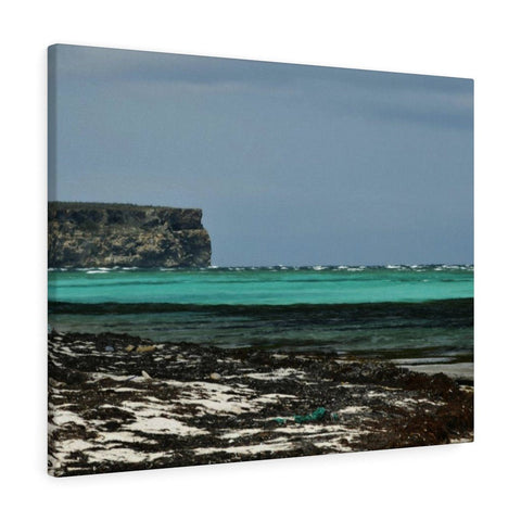 Image of Shining see of pajaros beach - Puerto Rico - the Galapagos of the Caribbean Canvas Printify