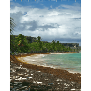Shower Curtains ID#101 - 4 sizes - Awesome remote Mona Island - Pajaros beach - near Puerto Rico - Yunque Store