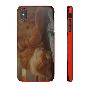 Snap Cases - Family PET - The hard-working cat named Orange - guess why? Phone Case Printify