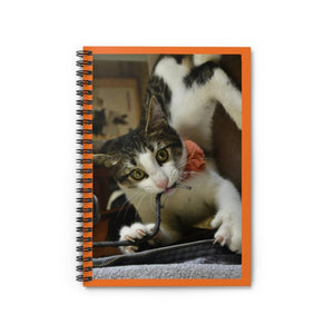 Spiral Notebook - Ruled Line - Tropical Pets Series - The home baby cat Dante - Isabela Puerto Rico - Yunque Store