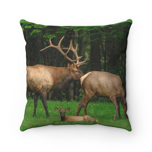 Spun Polyester Square Pillow - Celebrating the Awesome Great Smoky Mountain National Park - Yunque Store