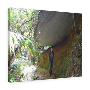 Stretched canvas - UK Print by Prodigi - Explorer Jose in El Yunque tradewinds trail - PR Canvas Printify