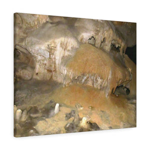 The Cave-Brain formation - Mona Island off Puerto Rico - the Galapagos of the Caribbean - near Pajaros beach Canvas Printify
