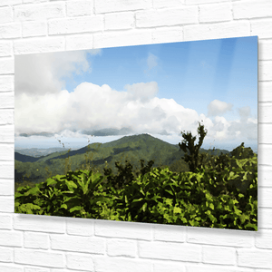 Unique view of the East peak from the Tres Picachos at 3K feet - El Yunque rainforest PR - converted to painting - Yunque Store